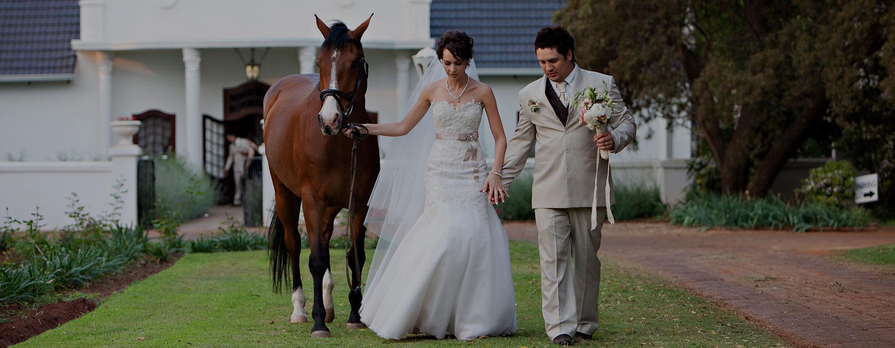 morgenzon-weddings